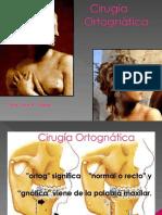 3. CIRUGIA ORTOGNATICA.ppt