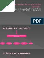 2. neoplasiasdelasglndulassalivales.pptx