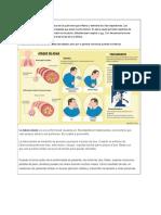 Enfermedades de Los Pulmones