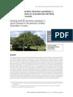 3752-7343-1-PB (2).pdf