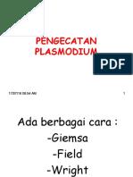 Plasmo Cat