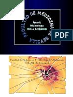 Curso de Traumatología Ocular . Prof. A. Benjumeda. Sevill