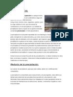 PRECIPITACIÓN-1.docx