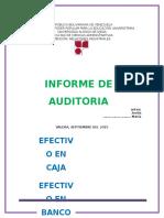 AUDITORIA CAJA.docx