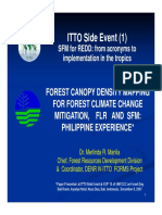 7 Bali 2 7 4 Forest Canopy Denr Philippines