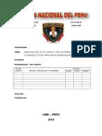 Monografia Ineficacia en El Acto Juridico
