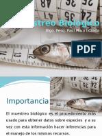 Muestreo Biológico III UNIA- Blgo.pes- Paul Muro