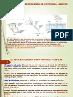 fisiologia I relaciones hidricas YA.pdf