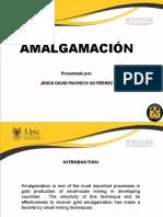 EXPOSICION-AMALGAMACION (1)