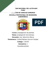 Propagacion Del Airampo