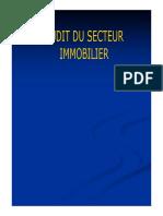 AUDIT IMMOBILIER.pdf