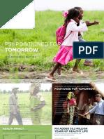 PSI Progress Report 2013 English