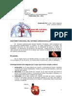 Fisiologia Del Sistema Cardiovascular