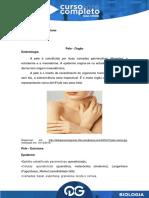 148534Aula 2 - C.C. - Biologia - Pedro Sultano - Histologia - Pele, Tecido Adiposo e Tecido Cartilaginoso