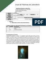 formato_practicas.docx
