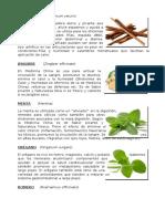 PLANTAS2.docxg