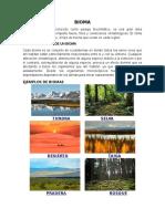 Biomas y Sus Caracteristricas, Biomas de Guatemala, Cadenas Troficas en Ecosistemas, Transferencia de Energia en Los Ecosistemas, Crecimiento de Poblacion y Su Regulacion.