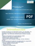 DINS3TAREA3_COTRM.pptx