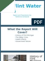 The Flint Water Crisis Report 1
