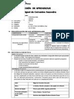 SESIÓN  DE APRENDIZAJE 18  de julio.pdf