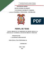 Universidad Andina Perfil de Tesis