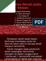 Peredaran Darah Pada Hewan