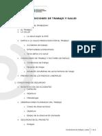 Indice Condiciones de Trabajo y Salud