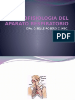 Histofisiologia Del Aparato Respiratorio Presentacion