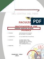 formulacion impr.docx