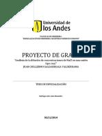 Análisis de La Mezcla de Concentraciones de Soluciones de Nacl en Una Unión de Tuberías Cruz