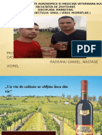 Vinul-Murfatlar (2) (1).pptx