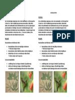 Koevolution.pdf