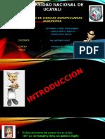 Otro Potasio Expo (1)
