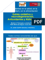 2012 02 14 AlzheimerAntioxidantes