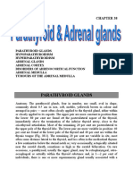 14 Parathyroid & adrenal.doc