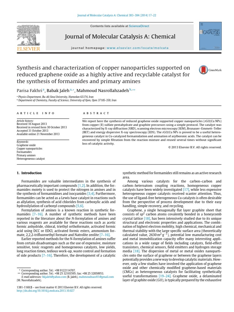 global concerns essay doc