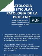 Patologia Testicular y Prostata
