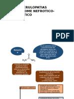 Sindrome Nefrotico -Sindrome Nefritico - Teoria