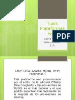 Tipos Plataformas Web