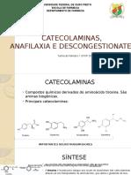 Apresentação 3.1 Catecolaminas