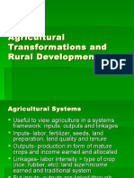 Agricultural_Transformations_and_Rural_Development (1).ppt