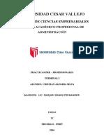 Informe de Practica Pre Profesionales Cri (1)