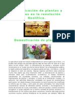 Domesticación de plantas y animales en la revolución Neolítica.docx
