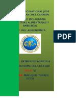2 Informe de Entomologia Agricola de La Coliflor