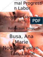Abnormal Progress in Labor (Precipitous Labor and Birth & Retraction Rings)