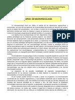 Principios de Neuropsicologia