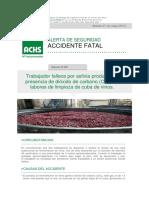 Ficha Acc Fatal Cuba Vinos