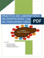 Capacidad de Intercambio Cationico Edafologia