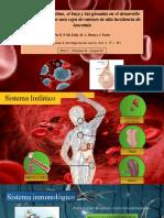Leucemia en Ratones