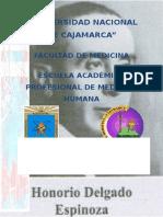 Honorio Delgado Espinoza